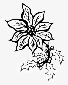 Poinsettia Coloring Page - Coloring Home | 280x224