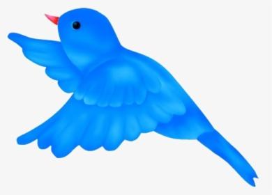 Birds Png Images Free Transparent Birds Download Kindpng