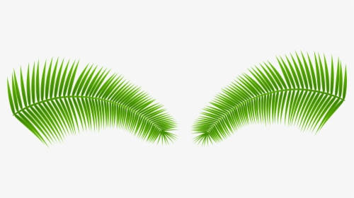 Tropical Leaves Png Images Free Transparent Tropical Leaves Download Kindpng Today's video is a tropical leaves green screen pack. tropical leaves png images free