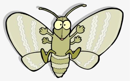 Dead Moth Fortnite Reddit Death Head Moth Png Transparent Png Kindpng