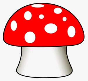 Mushroom Toadstool Fungus Poisonous Toxic Red Drawing Of