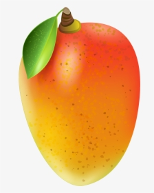 Mango Vector Png Images Free Transparent Mango Vector Download Kindpng In this page, you can download any of 32+ mango vector. mango vector png images free