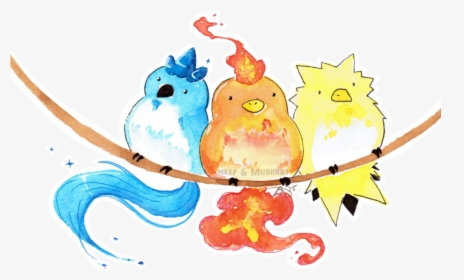 Check It Out She S Made Some Cute Watercolor Drawings Cute Pokemon Legendary Birds Hd Png Download Kindpng