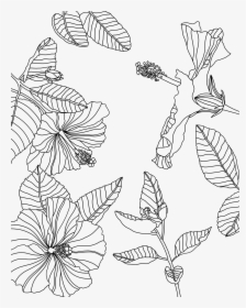 Transparent Tumblr Png Coloring Pages Coloring Page Procreate Free Png Download Kindpng