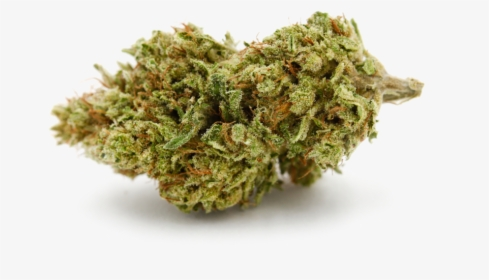 Weed Nugget Png Images Free Transparent Weed Nugget Download Kindpng