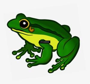 Mlg Frog Png Transparent Background Frog Clipart Png Download Kindpng