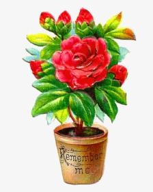 Flower Pot Png Images Free Transparent Flower Pot Download Kindpng