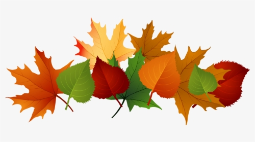 Pile Of Leaves Png Images Free Transparent Pile Of Leaves Download Kindpng
