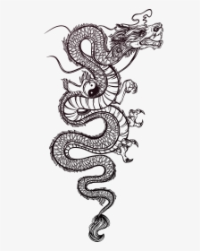 tattoo chinese illustration dragon vector hand painted chinese dragon tattoo drawing hd png download kindpng chinese dragon tattoo drawing hd png