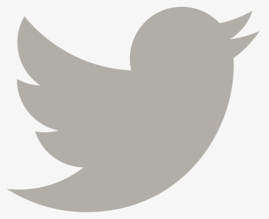 Twitter New Logo 2019 Hd Png Download Kindpng