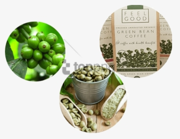 Banner Image With Transparent Green Coffee Benefits In Hindi Hd