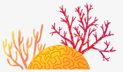 Coral Reef Sea Ocean PNG, Clipart, Aquarium, Aquarium Decor, Background,  Background Size, Coral Free PNG Download