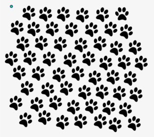 Paw Print Png Images Free Transparent Paw Print Download Kindpng Download transparent paw png for free on pngkey.com. paw print png images free transparent