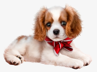 Cute Puppy PNG Images, Free Transparent Cute Puppy Download - KindPNG