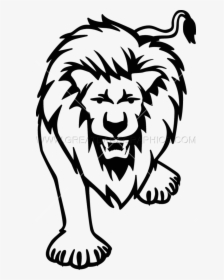 Lion Drawing Png Images Free Transparent Lion Drawing Download Kindpng Draw the shapes of the lion's body and neck. lion drawing png images free