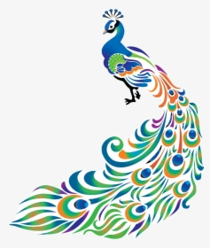 Peafowl Feather Bird Drawing Clip Art Peacock Clipart Png Black And White Transparent Png Kindpng