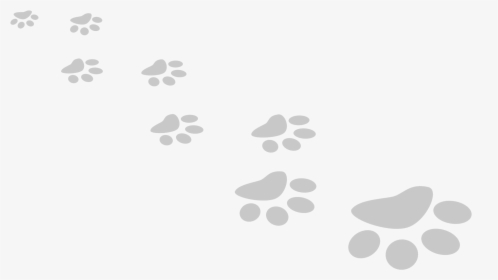 Cat Paw Print Png Images Free Transparent Cat Paw Print Download Kindpng To view the full png size resolution click on any of the below image thumbnail. cat paw print png images free