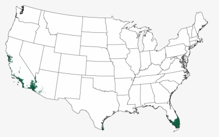 Large Us Map With State Names, HD Png Download - kindpng