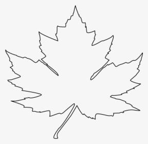 Transparent Leaf Outline Clipart Maple Leaf Vector Outline
